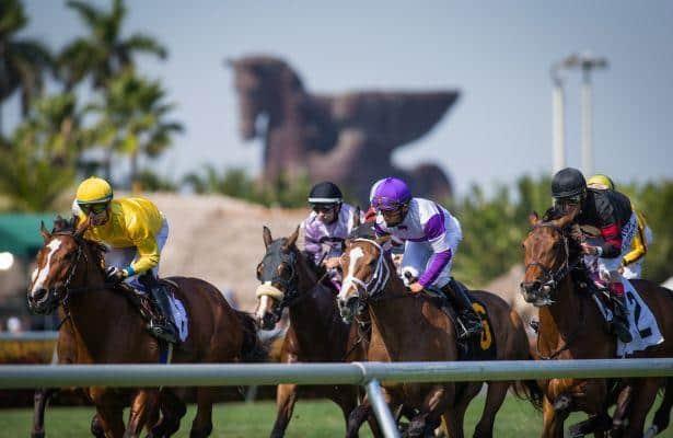 Tapeta track racing starts next Thursday at Gulfstream Park