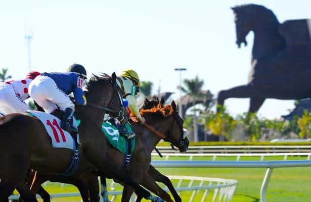 Gulfstream 'blatantly violating' order; Florida Derby in jeopardy?