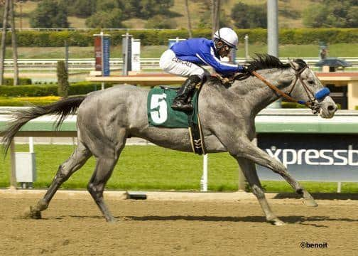 Sadler, Holy Candy Aim High in Blue Grass Stakes