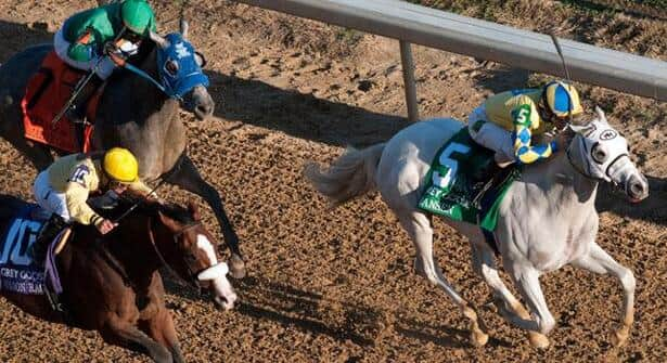 Horse Racing Nation picks the 2012 Kentucky Derby