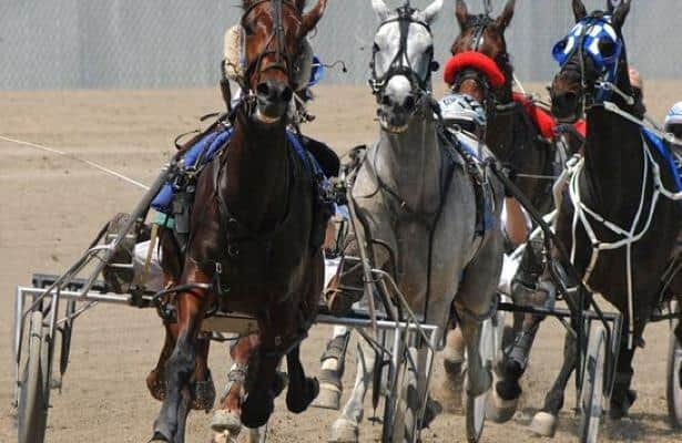 New date set for 2020 World Harness Handicapping Championship