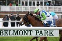 Hawksmoor wins 2017 Beaugay