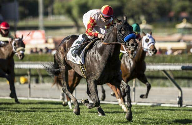 Heck Yeah, Take the One O One set to grapple in Echo Eddie Stakes