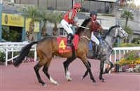 Helene Charisma finished ninth on his Hong Kong debut in the Hong Kong Classic Mile.