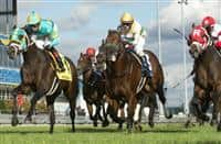 Hembree wins 2018 Nearctic Stakes