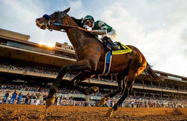 Horse racing betting odds tomorrow never knows trading binary options on thinkorswim