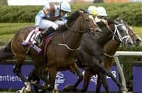 October 30, 2015 : Hit It a Bomb, ridden by Ryan L. Moore, wins the Breeders' Cup Juvenile Turf (Grade I) at Keeneland Race Course in Lexington, Kentucky on October 30, 2015. Sue Kawczynski/ESW/CSM
