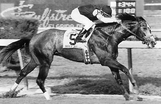 Flashback: These are the 5 greatest Florida Derby winners
