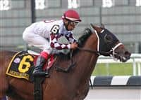 Homeboykris wins the Champagne - 2007 at Belmont