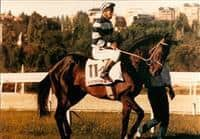 /horse/Vichisky