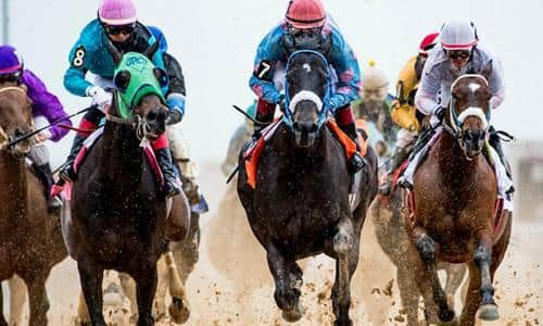 Finger Lakes HBPA offers 'shot in the arm' checks to horsemen