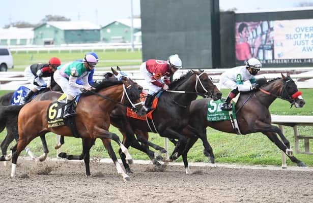 Why O Besos is a live long shot for the Kentucky Derby