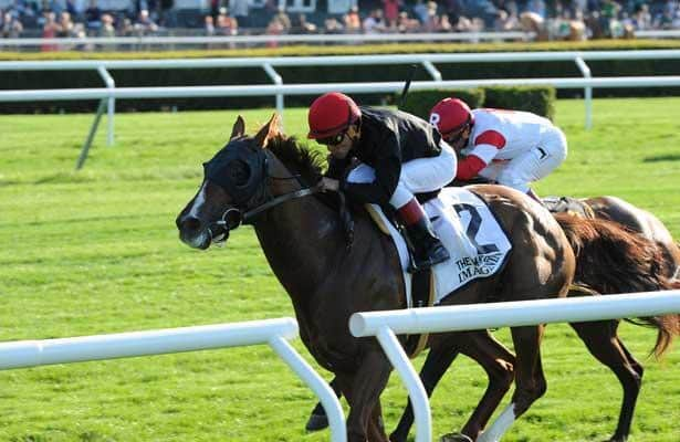 Handicapping a Graded Stakes Bonanza at Belmont Park