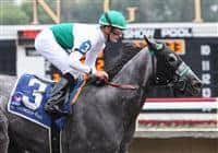 Informed Decision takes the 2009 Chicago Handicap