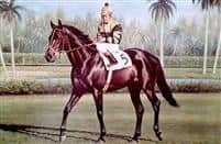/horse/Seattle Slew