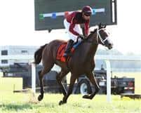 Jezebel's Kitten wins Exacta Systems Juvenile Fillies Stakes at Kentucky Downs in August 20019.