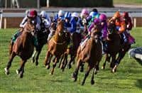 November 1, 2014: Karakontie (Blue cap)(JPN), ridden by Stephane Pasquier and trained by Jonathan Pease, rallies from far back to win the Breeders' Cup Mile (G1) at Santa Anita Park in Arcadia, California on November 1, 2014. Kazushi Ishida/ESW/CSM