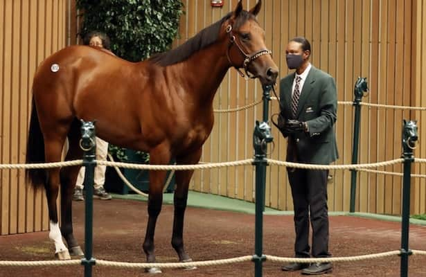 Keeneland sale: Justify, City of Light colts bring $1.5 million-plus