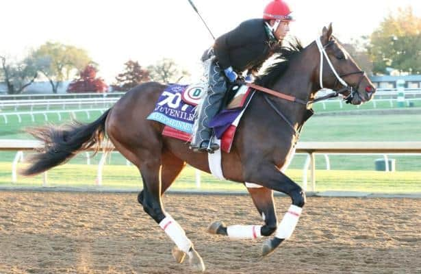 Keepmeinmind back at work; Southwest Stakes possible