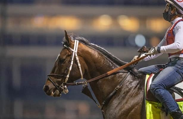 Preakness 2021: 3 long shots that could hit the board