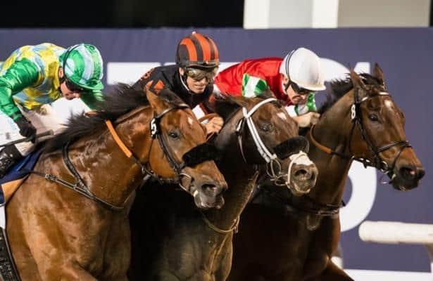 Kimbear emerges a winner in Al Maktoum Challenge Round 1 thriller