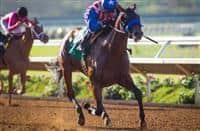 /horse/Klimt 1