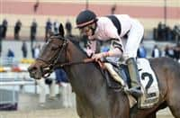 Lewis Bay wins 2015 Demoiselle