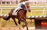 Lexington Street wins 2015 Maryland Million Lassie