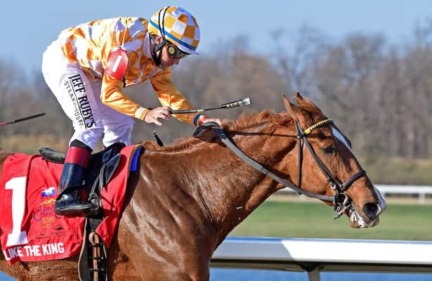 Like the King's pedigree raises Kentucky Derby questions