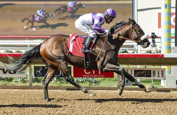 Well-traveled Listing takes aim at Belmont's Champagne Stakes