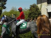 Leaving the Paddock at Keeneland