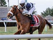 Main Sequence 3