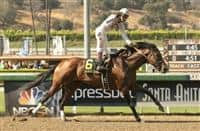 Majestic Harbor Gold Cup 615 X 400