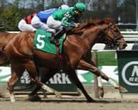 Marriedtothemusic wins the 2014 Affirmed Success Stakes at Belmont Park
