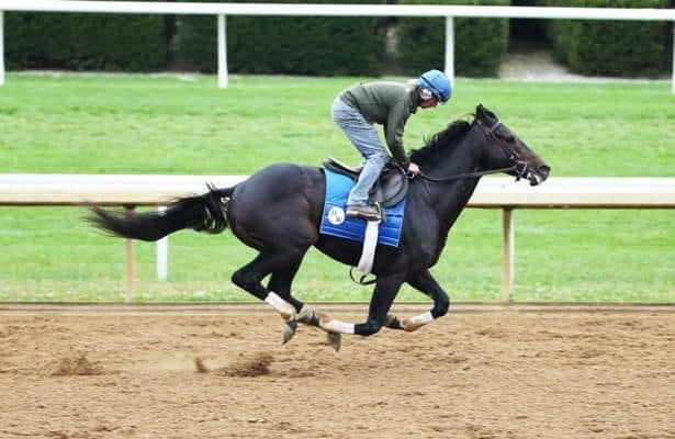 Maxfield highlights Sunday's graded stakes work tab