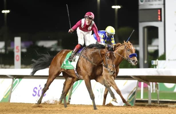 Baffert: Runner-up Charlatan 'ran a big race' in Saudi Cup