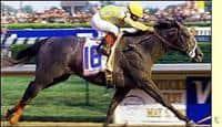 Monarchos captures the Kentucky Derby