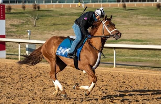 Essential Quality, Monomoy Girl arrive at Oaklawn for seasonal bows