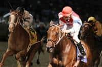 /horse/Moonshine Mullin