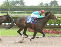 Motovato wins Sumter Stakes for second year in a row.