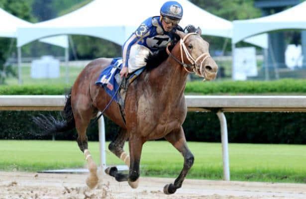 2020 Kentucky Derby: Mr. Big News will join field