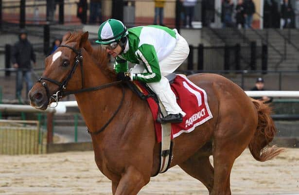 Riding a three-race streak, Mr. Buff gets a new stakes assignment