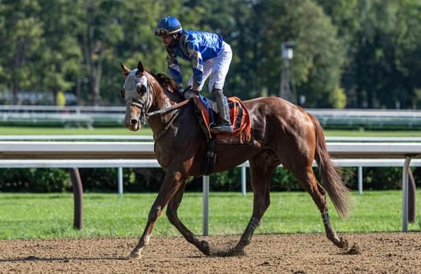 Mystic Guide set for 4-year-old bow in Oaklawn's G3 Razorback