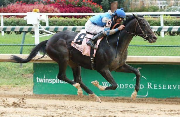2017 Kentucky Derby: Not This Time Pedigree Profile