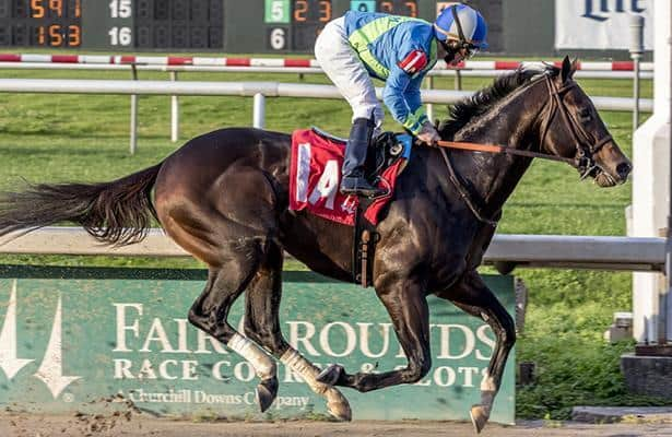Amoss to test exciting state-bred No Parole on 'national level'