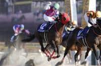Nonkono Yume wins 2018 February Stakes