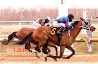 Noteworthy Peach wins at Laurel (3-28-15).