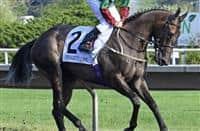 /horse/Nyaleti