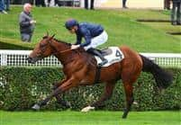 /horse/Ocean Atlantique