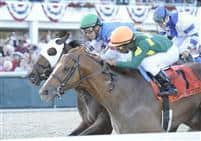 Odysseus nips Schoolyard Dreams by a nose on the wire in the 2010 Tampa Bay Derby